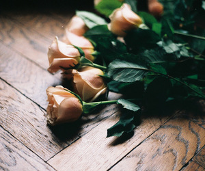 gift, home, and roses image