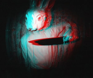 rabbit, knife, and bunny image