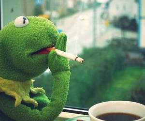 cigarette, coffee, and kermit image