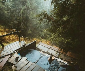 forest, pool, and cabin image