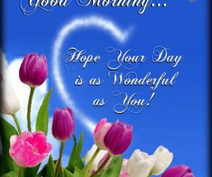 good morning and wonderful day image