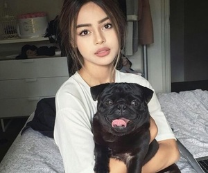 dog, makeup, and cute image