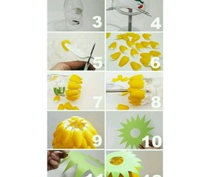 diy, do it yourself, and pet image