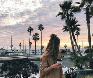 beach, girl, and palms image
