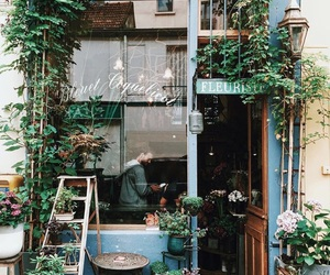 shop, plants, and green image