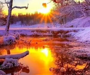 winter and nature image