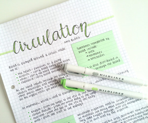 aesthetic, beautiful, and handwriting image