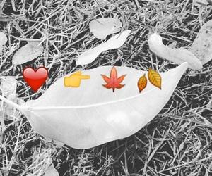 aspire, autumn, and love image