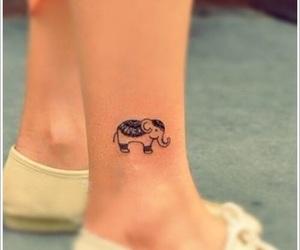 elephant and tatto image