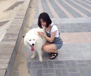 dog, doggy, and girl image