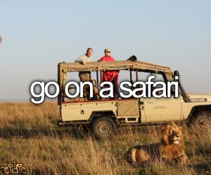 safari, before i die, and travel image