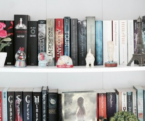 books and shelves image
