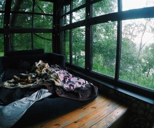 home, wood, and nature image
