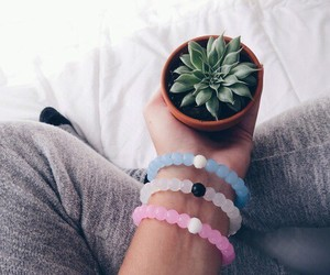 accesories, bracelets, and cactus image