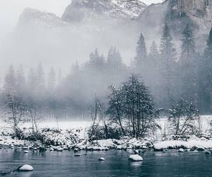 adventure, fog, and frozen image