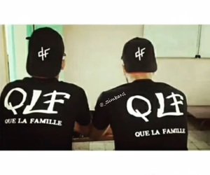 pnl and qlf image