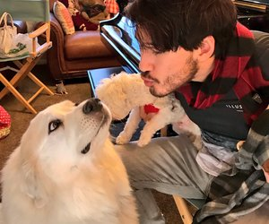 markiplier and mark fischbach image