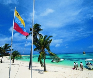 beach, summer, and venezuela image