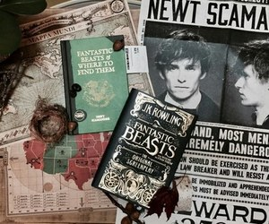 book and fantastic beasts image