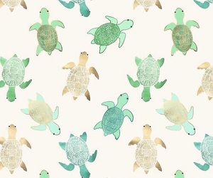turtle, wallpaper, and background image