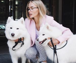 dog, girl, and pretty image