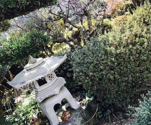 green and japanesegarden image
