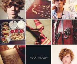 harry potter, next generation, and hugo weasley image