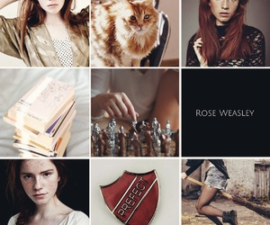 harry potter, rose weasley, and next generation image
