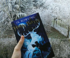 arbre, froid, and harrypotter image