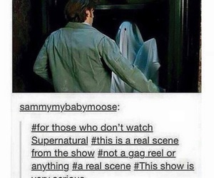funny, tumblr post, and ghost image