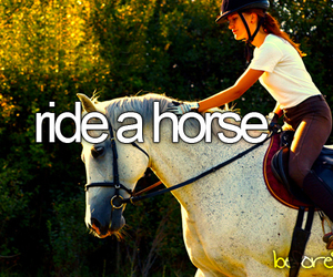 before i die and horse image
