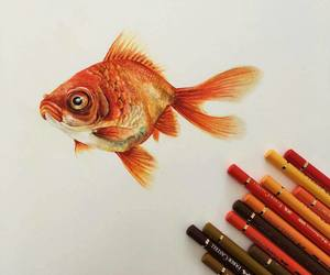 animal, art, and pencils image