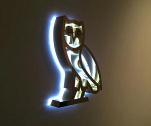 Drake, ovo, and owl image
