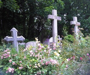 cross, flowers, and cemetery image