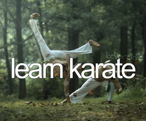 -things i want to do and -karate image