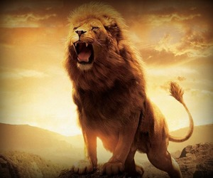 lion, roar, and narnia image
