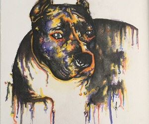 i'm, beautiful breed, and pit bull art image
