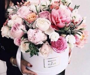 beauty, flower, and kawaii image