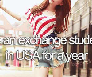 usa, america, and exchange image