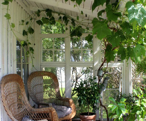 garden, plants, and porch image