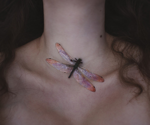 aesthetic, dragonfly, and body image