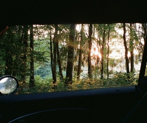 beautiful, forest, and car image
