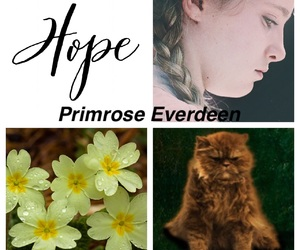 the hungergames and primrose everdeen image