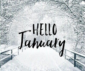 january, nature, and tumblr image