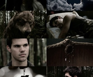 jacob black, movie, and Taylor Lautner image
