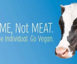 help, sign, and vegan image