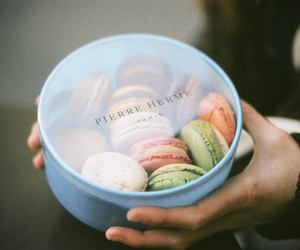 macarons, macaroons, and pastry image