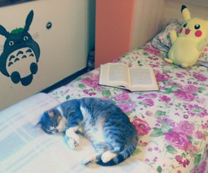 book, totoro, and cat image