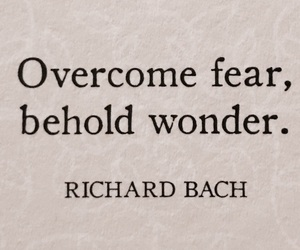 quotes, words, and fear image
