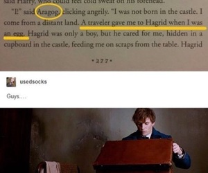 harry potter, newt, and rubeus image